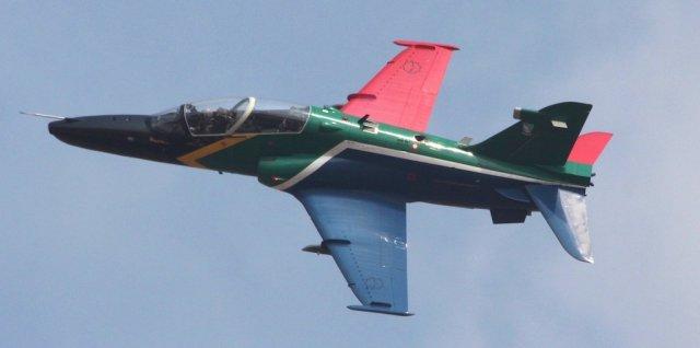 hawk-005