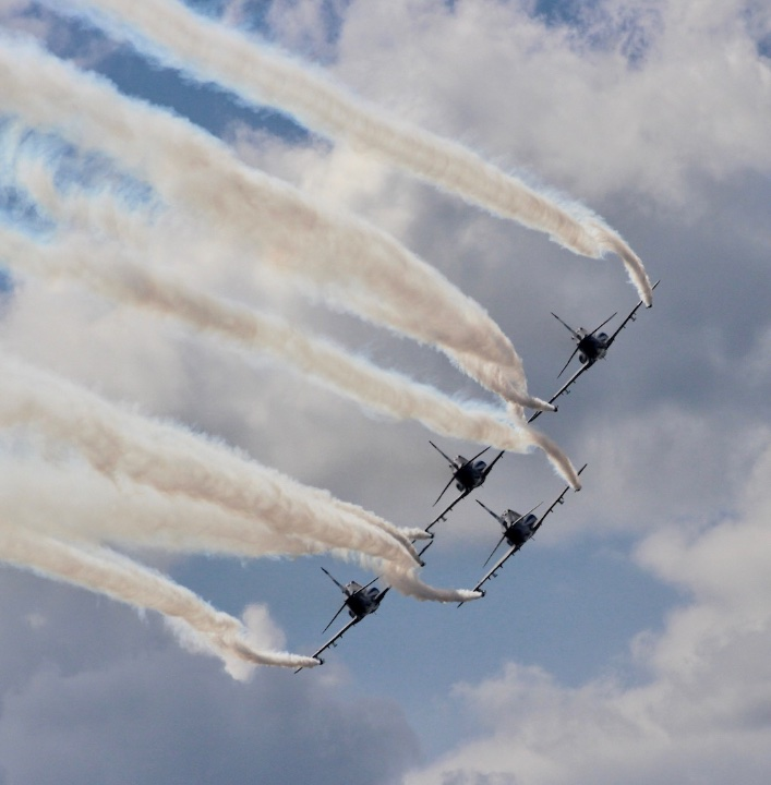 hawks-002