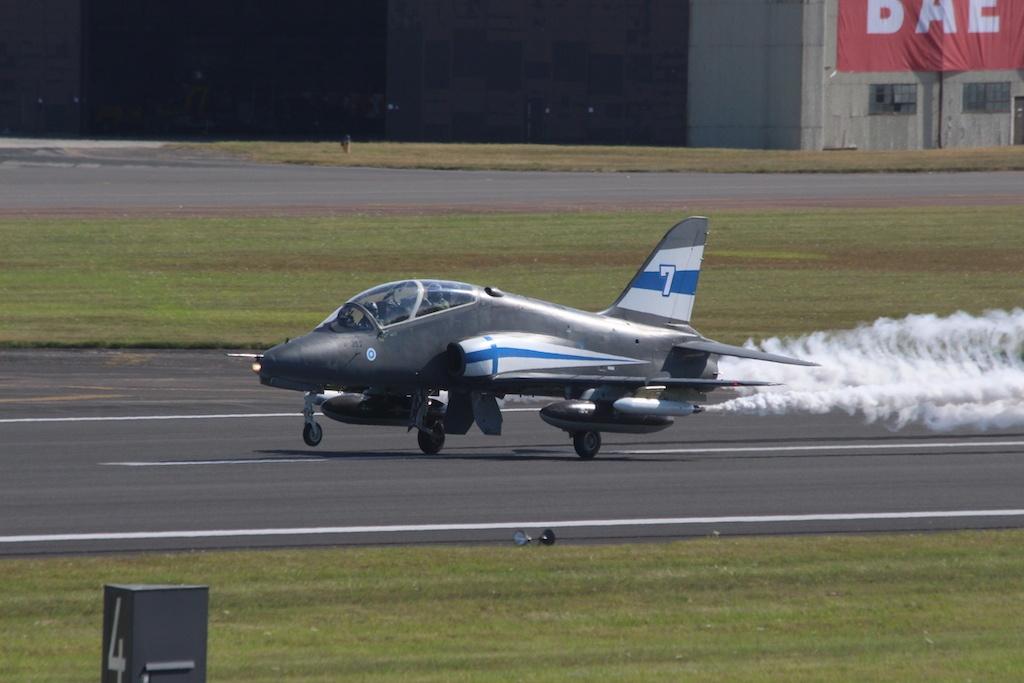 hawk-002