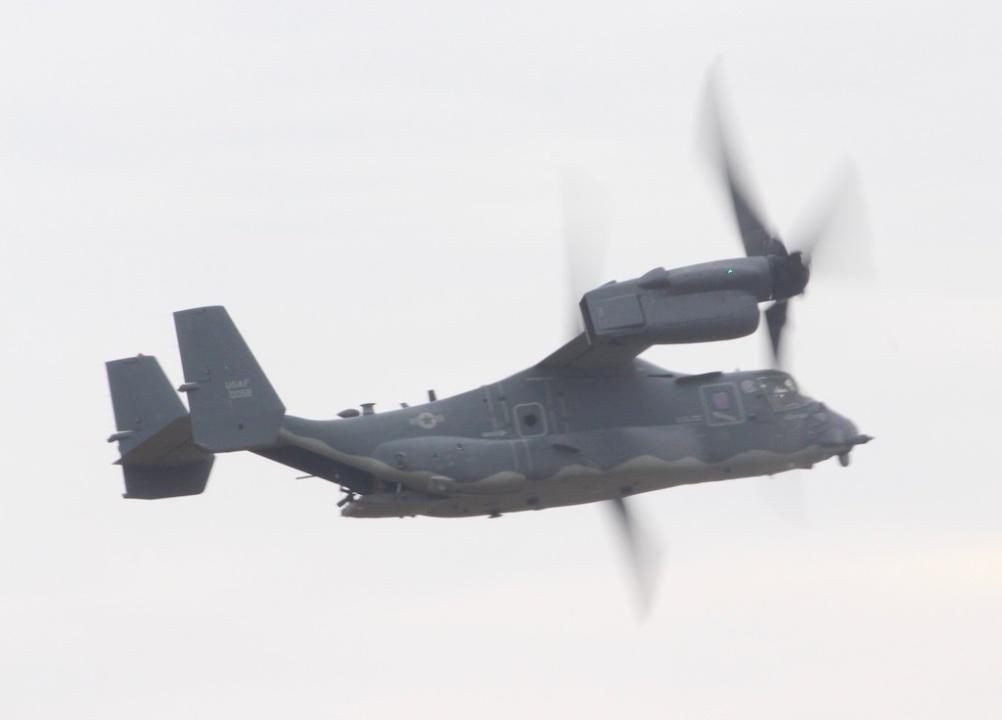 osprey-001
